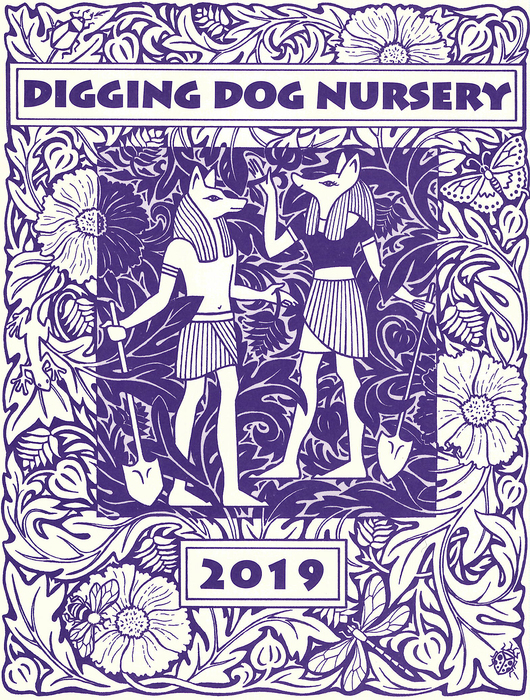 2019 Catalog Cover Digging Dog Nursery