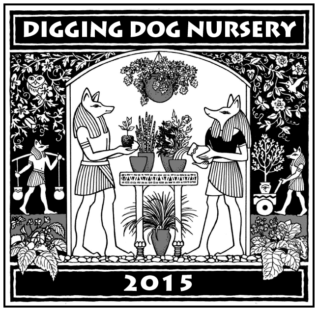 digging dog nursery tshirt 2015